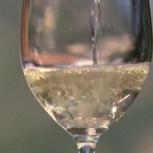 1.Kako da probate vino.00_02_03_00.Still018